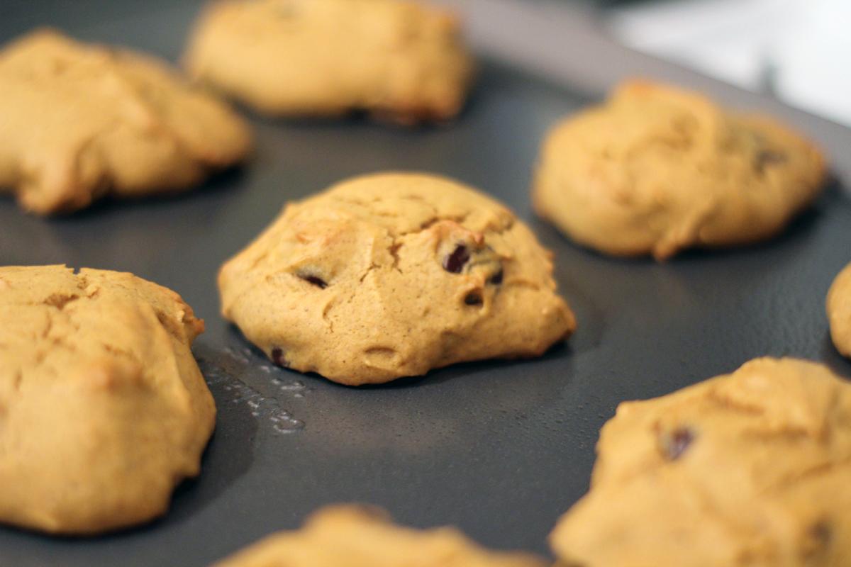 dark chocolate chip pumpkin cookies – really risa